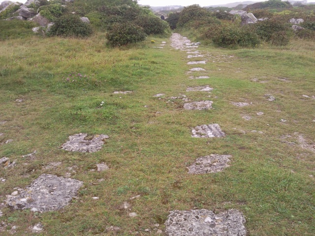 stone blocks set in two parrallel rows in the ground to act as railway sleepers. No rails remain in situ.