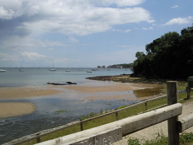 View of Studland bay from café overlooking it. Large swathes of rotting seaweed cover the sandy  beach