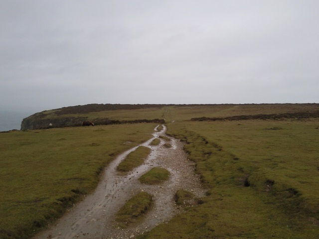 Path through the Knavocks