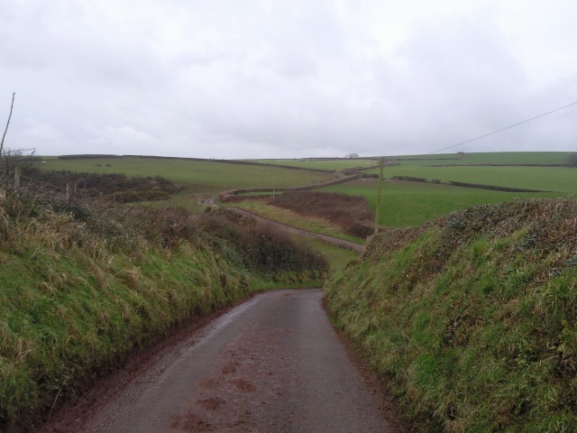 A narrow road - long and with many a winding turn