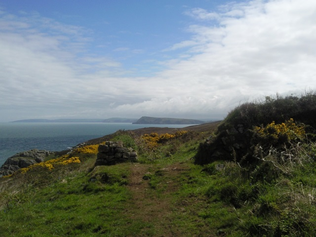 Dinas Head from Crincoed Point