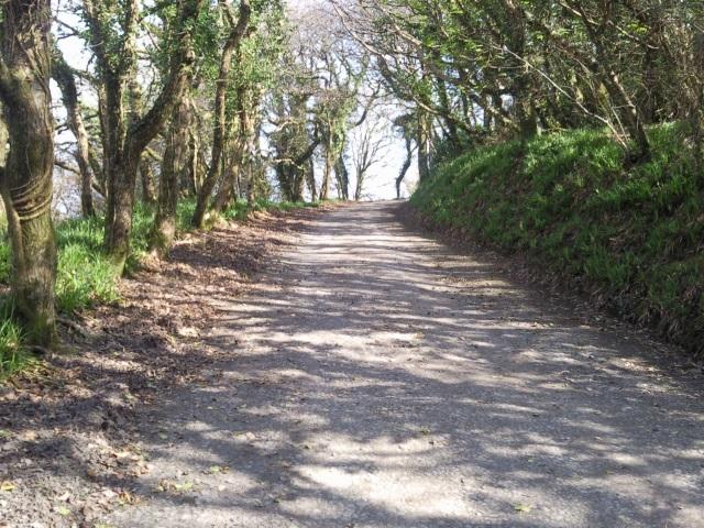 The Hobby Drive, Clovelly