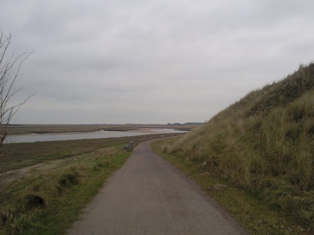 Pembrey Burrows with Pembrey Forest in the distance