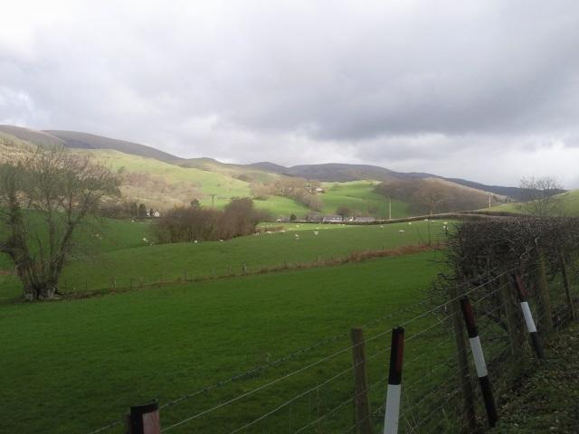 Fields seen from road