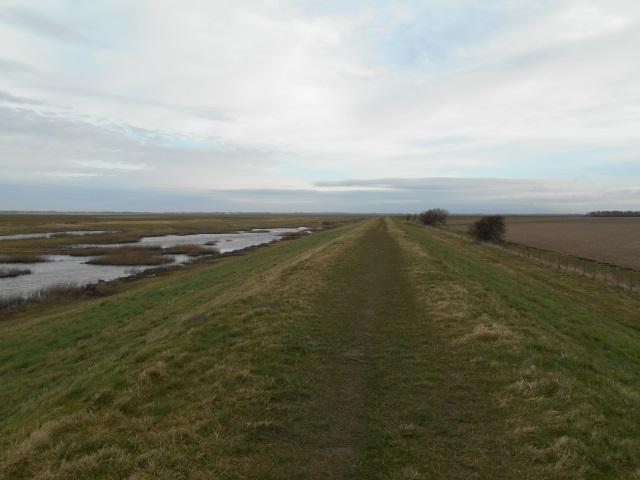 Banks marsh dyke