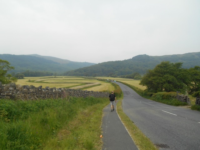 The lemming walking beside the A595