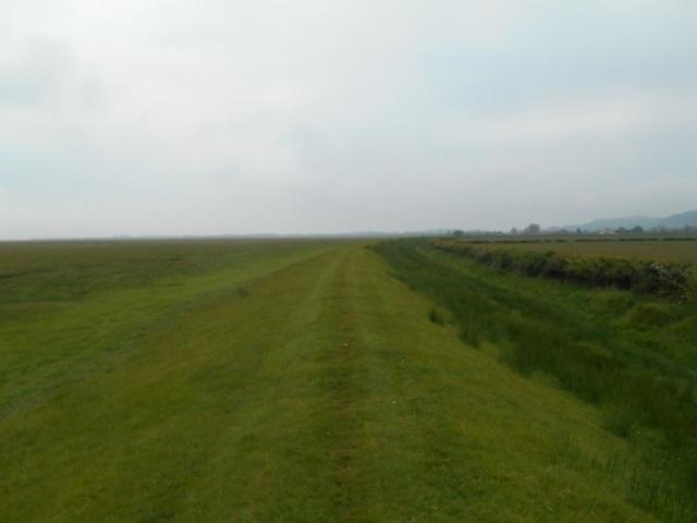 Embankment beside Millom Marsh