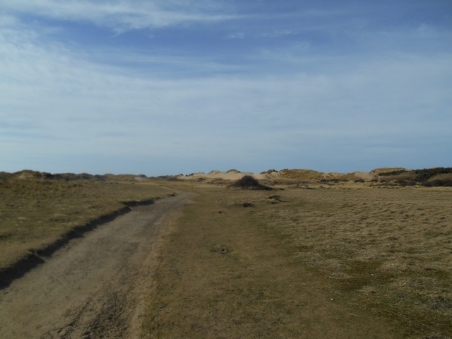 sand dunes in Formby