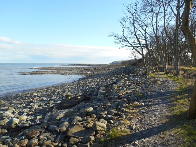 Path to Cruggleton Bay, between a wood and a stony beach.