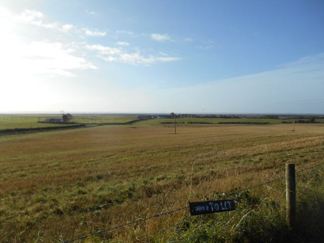 Preston Merse beyond flat fields