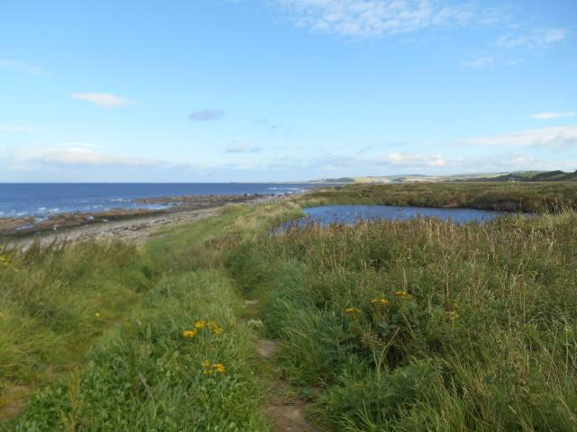 A shingle beach and an old quarry pond
