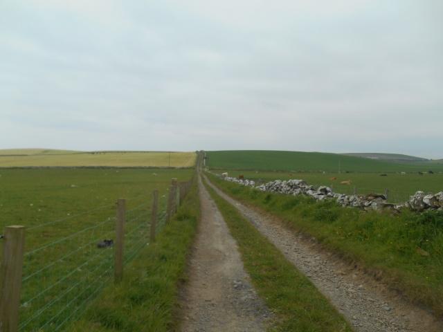 A farm track between fields; a low hill rises ahead