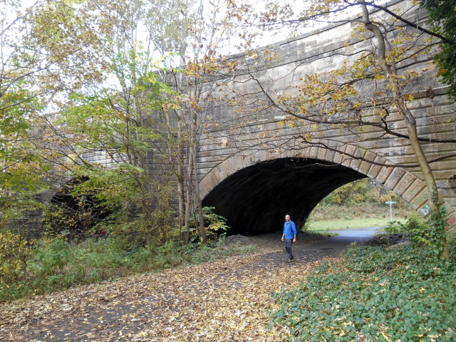 The Lemming under Kelvin Crossing Aqueduct