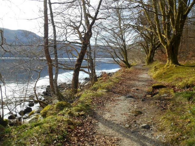 Leafy, lochside path