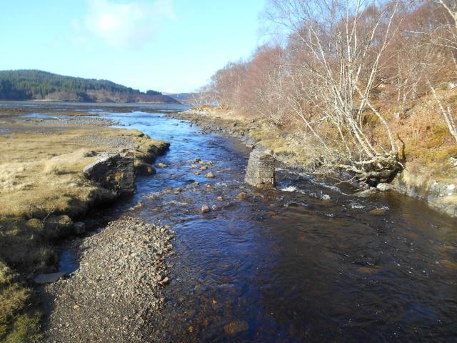 Remains of disused bridge