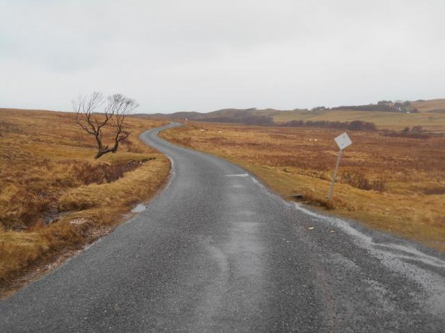 The Kilmory Road