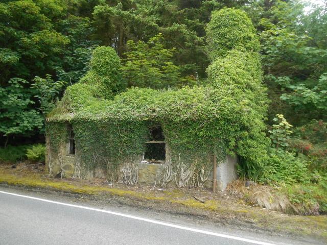 Ruined cottage in Tayantruain