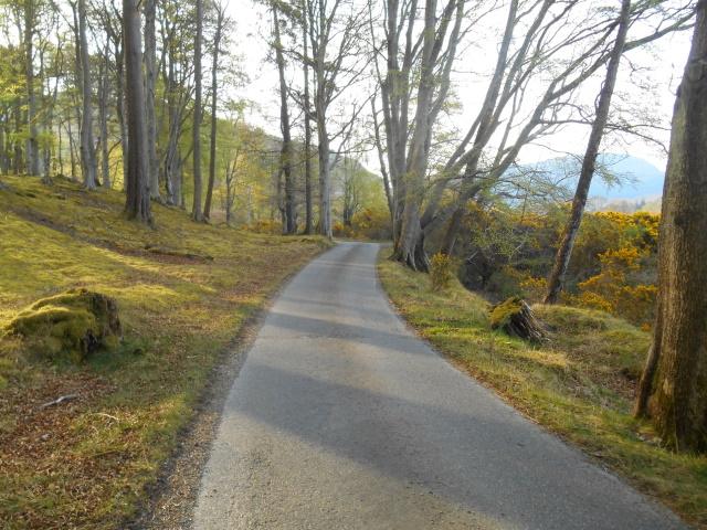 Badrallach & Aultnaharrie Road