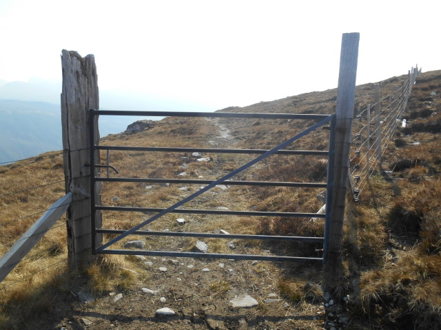 Another gate