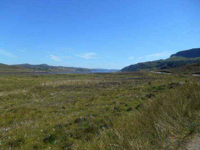 Salt marsh at the head of Loch Slapin