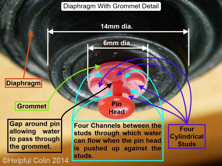 diaphragm shown in its working attitude