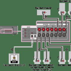 Xlr Y Connector Microbiology Prokaryotic Cell Diagram Labeled Manuel D'aide | Raccordement Des Enceintes