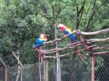 Macaws at the ruins.  Injured birds are nursed back to health and released.  There is also a nursery for baby birds.