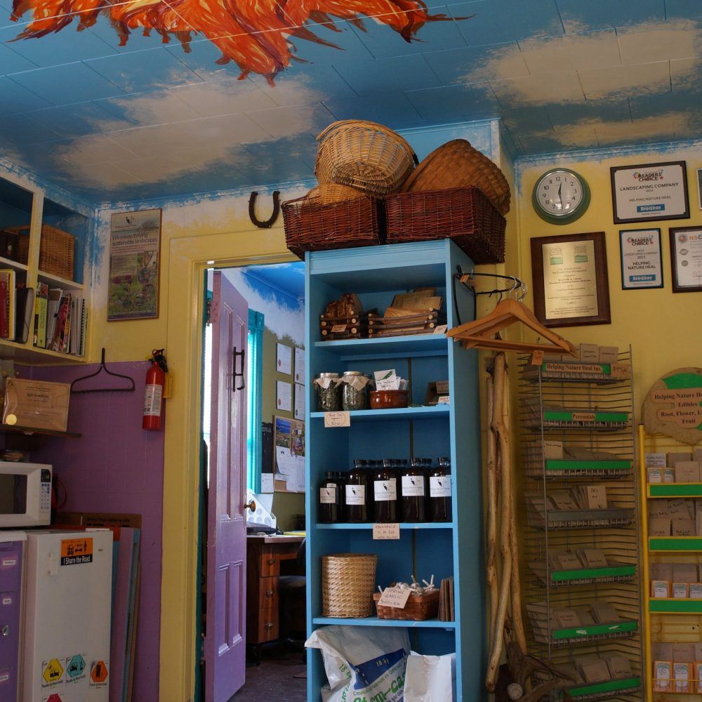 Nature's Store
