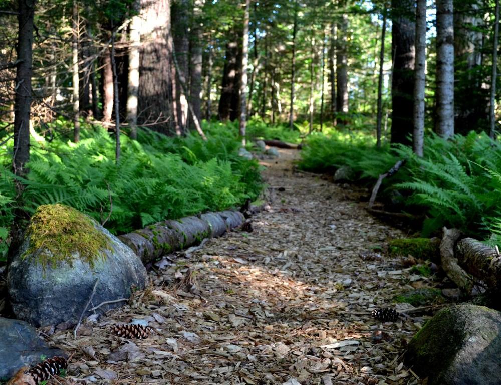 Conservation Land Management Plans