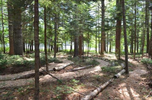Woodland Labyrinth