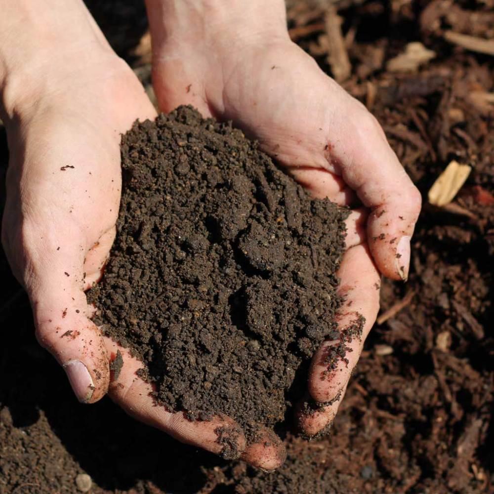 Makin' Dirt