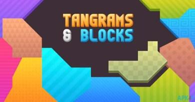 Tangrams & Blocks