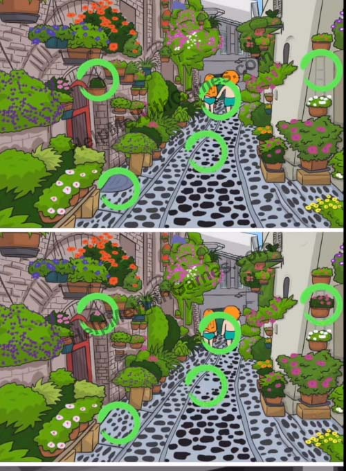 Find The Differences The Detective Secret Travel Level 10