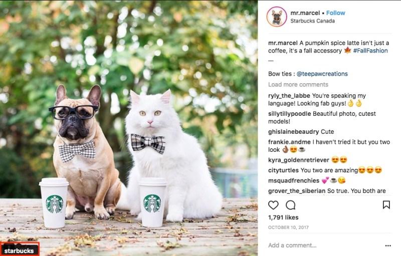 Make money on IG Starbucks 1527149607 10 Free Ways to Get More Followers on Instagram