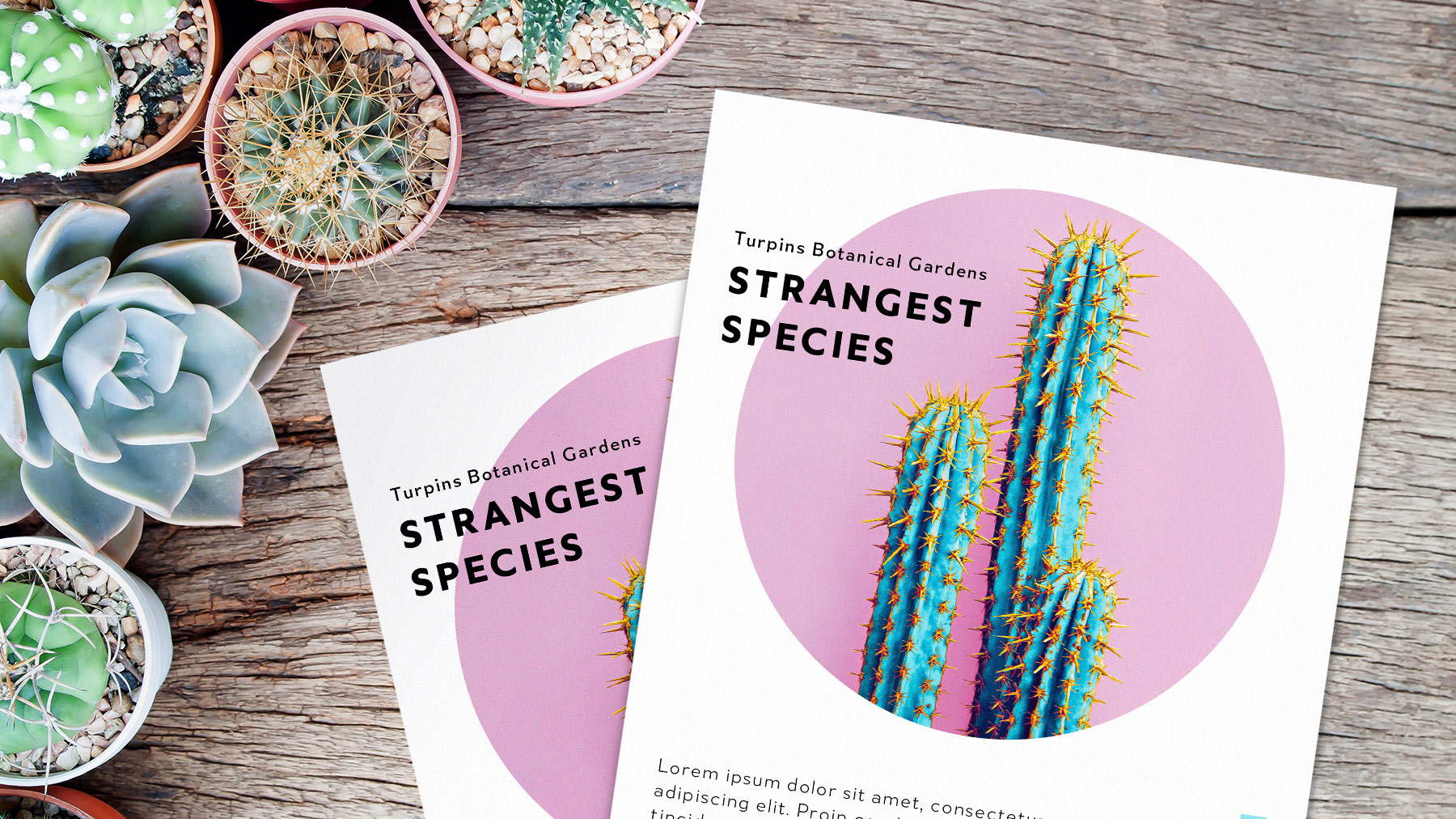 Erica Larson, Art Director For Adobe Studio, Shows How To Put Together A  Stylish, Eye-Catching Flyer In Just Five Easy Steps. Follow Simple  Techniques And
