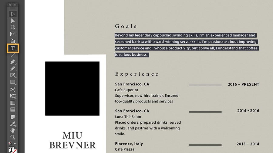 indesign cv exemple