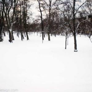 20150112-kaivopuisto-CIMG0730
