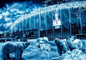 Helsinki secrets revealed: Icepirates