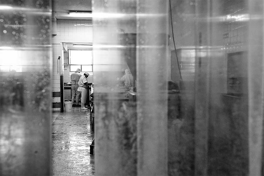 Torgelon Cooperative by Daniel Minsky