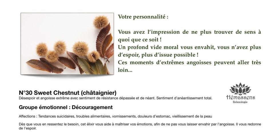 Sweet Chesnut Fleur de Bach Hémassens Fameck
