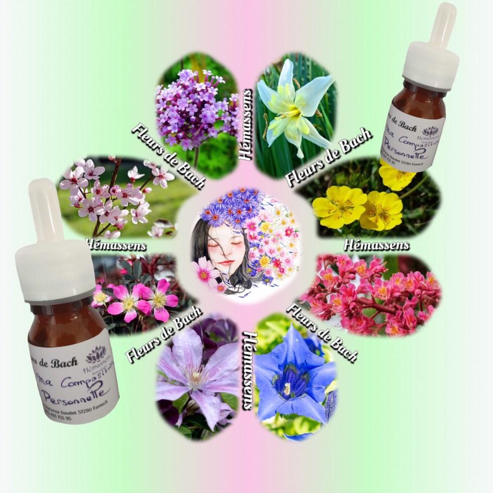 Fleurs de Bach Hémassens Relaxologie Fameck