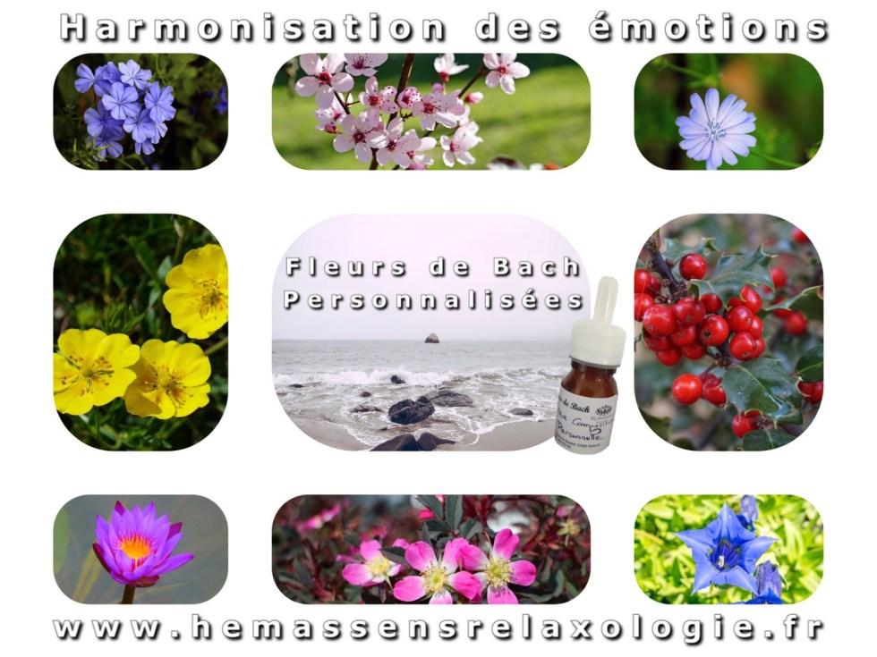 Florithérapie Fleurs de Bach Hémassens Relaxologie Fameck