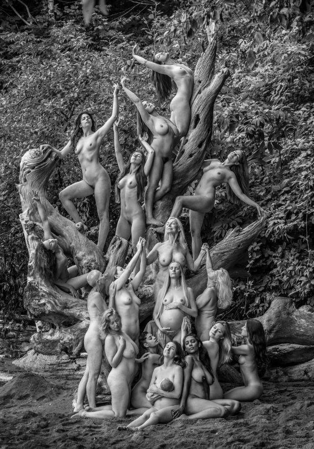 goddess-tree-three-edit-10-1-of-1-896x1280 The Tree of Life, from the Goddess Tree Photo shoots for the Nude in the Landscape series.