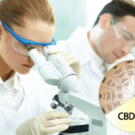 Can You Trust Your CBD Supplier?