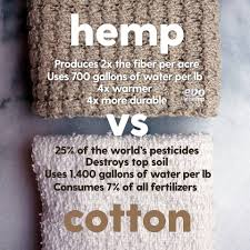 Hemp vs Cotton: Take a closer look!