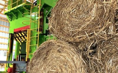 Oak is Out, Hemp is in – HempWood Factory Opens in Kentucky