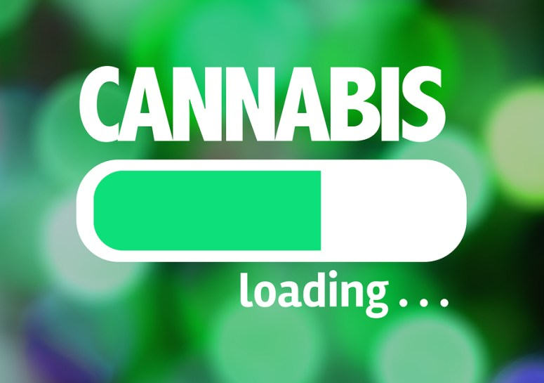 17 of the Most Memorable Cannabis and Weed Quotes of All Time –  HempireSEO.com