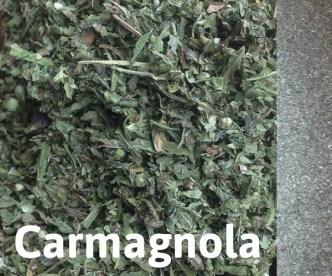 hempoint-kvety-Carmagnola