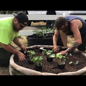 🌱The Importance of Food Farming Pt 1