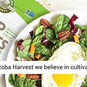 Manitoba Harvest Organic Hemp Hearts Raw Shelled Hemp Seeds - Gluten Free - REVIEW
